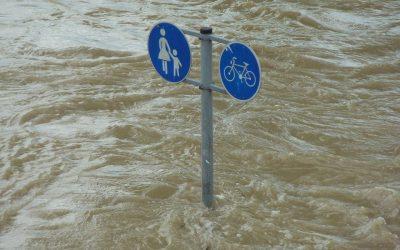 Benefits of Lifesaver: Flood Begone Forever